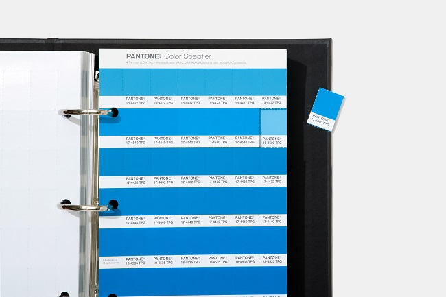 Giới thiệu bảng màu mới theo xu hướng thiết kế của Pantone 2