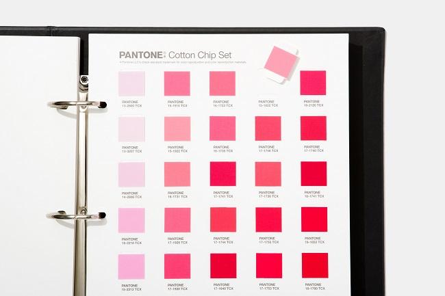 Giới thiệu bảng màu mới theo xu hướng thiết kế của Pantone 3