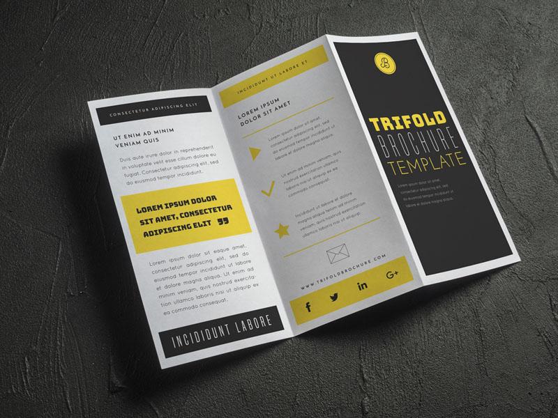 In Nhanh Catalogue Đẹp Giá Rẻ Tại TPHCM 04   Click Xem Giá In Nhanh