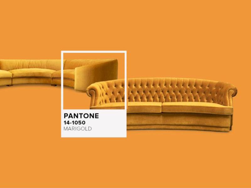 Xu hướng màu sắc trong thiết kế do Pantone bình chọn 07 | Kalapress.vn